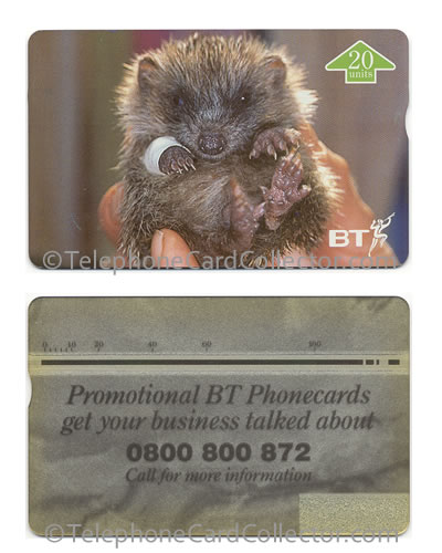 BTI154: St. Tiggywinkles Full Face Trial Card - BT Phonecard